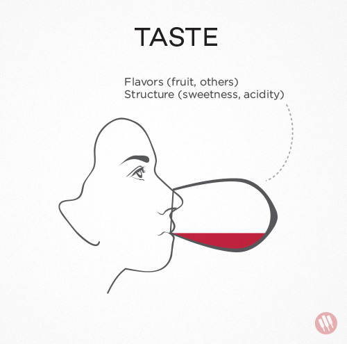 how to taste wine step 3 illustration of a woman tasting a glass of wine
