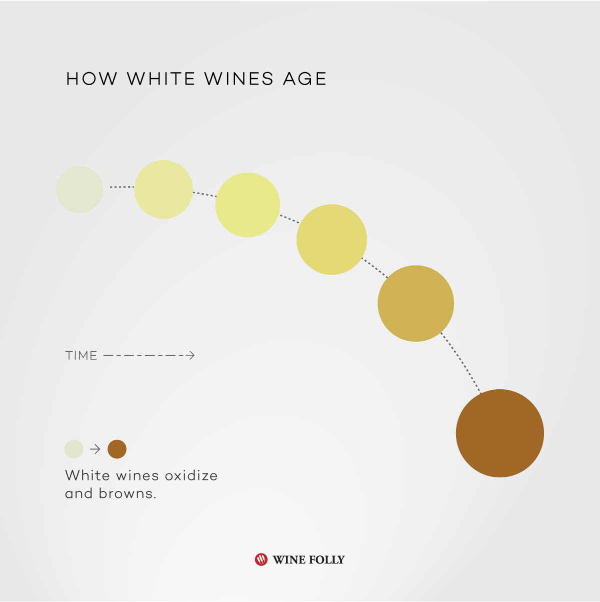 How white wines age - infographic by Wine Folly
