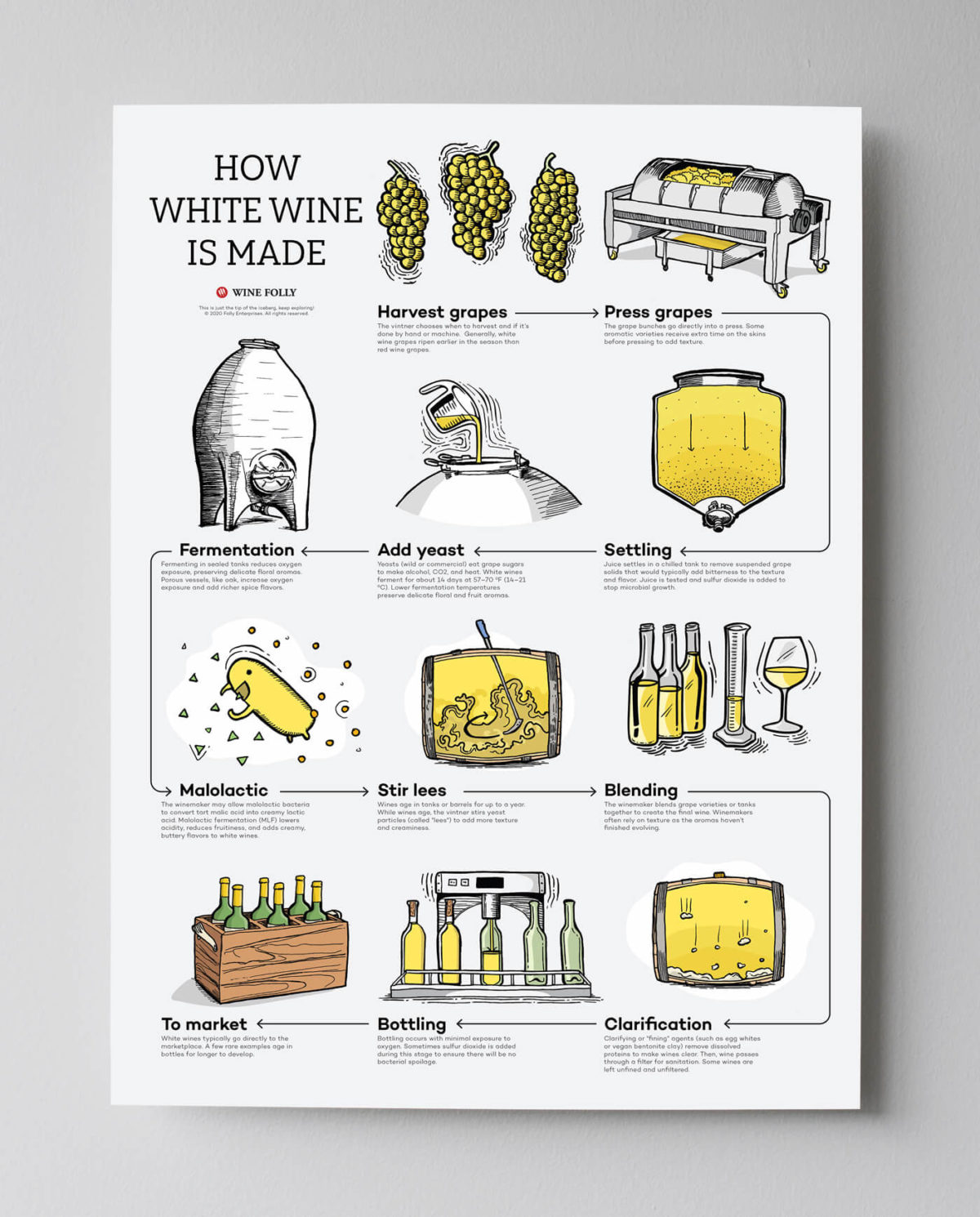 how-white-wine-is-made-poster-gray-bg