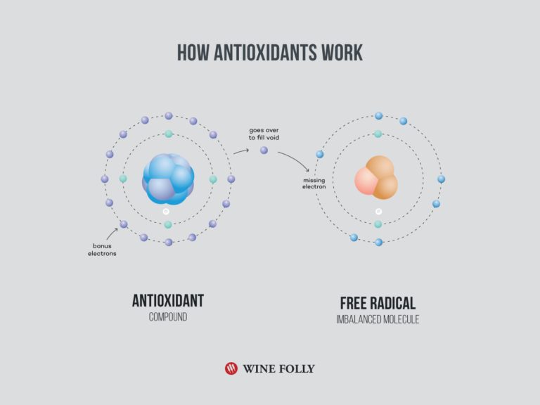 how-wine-antioxidants-work-infographic