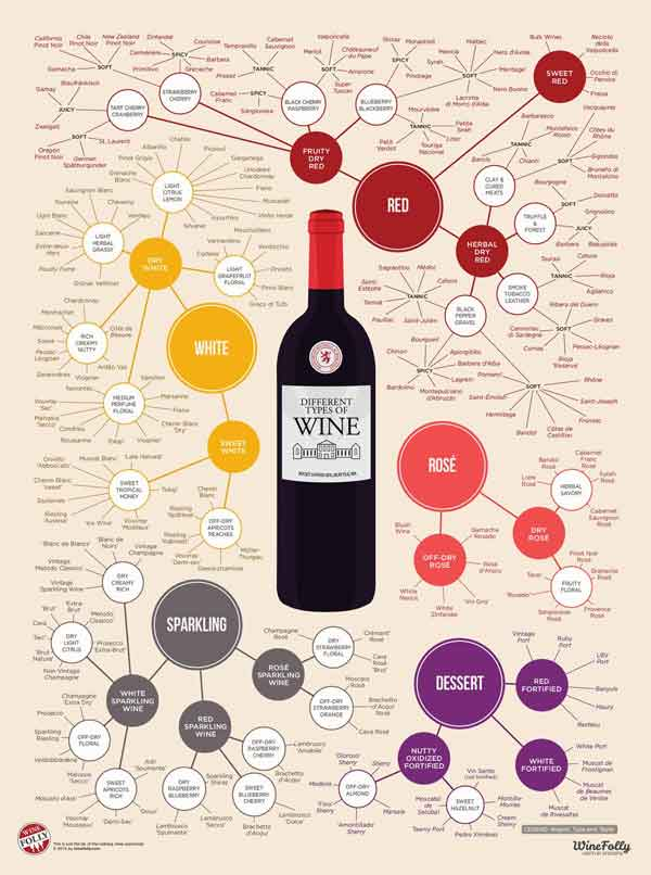 Different Types Of Wine Poster