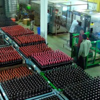 india nashik sula vineyards bottling Indian wine