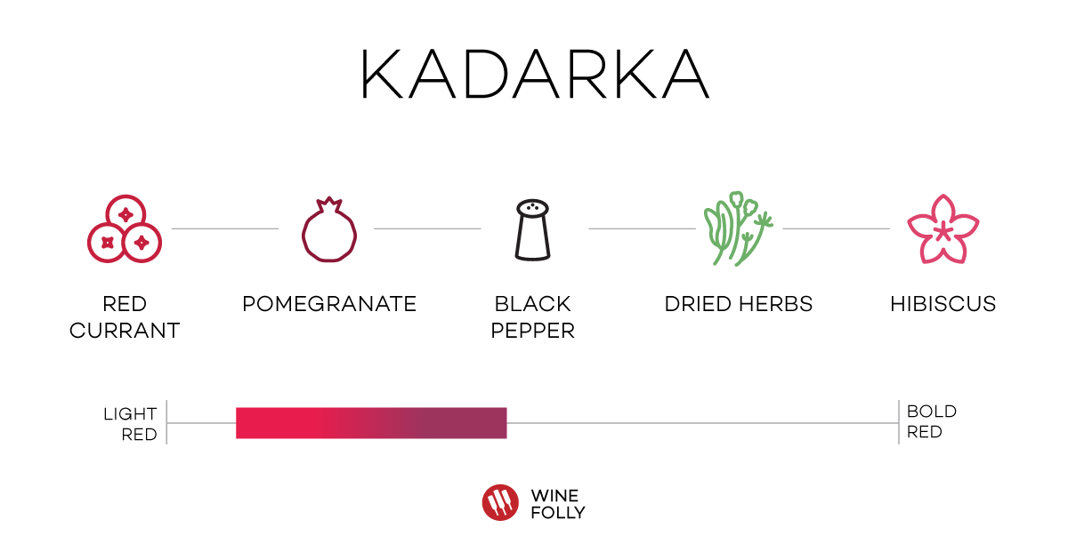 Kardarka (aka Gamza) Tasting Notes Bulgarian wine Wine Folly