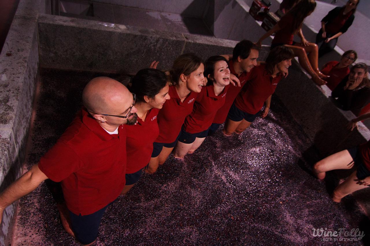 The lagars at Quinta de Leda in Douro wine country