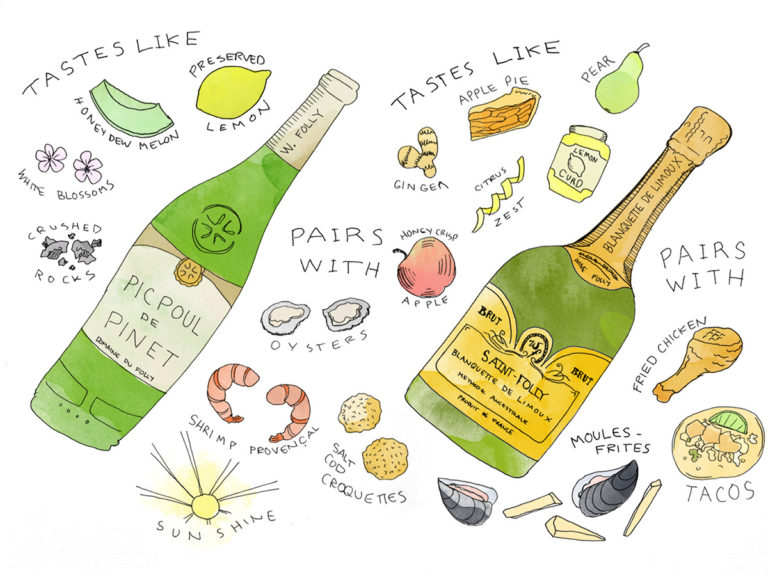 languedoc-white-wines-illustration-wine-folly