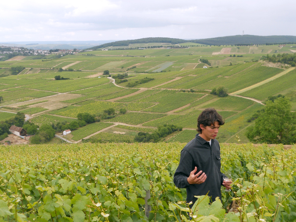 loire-valley-jameson-fink-2009