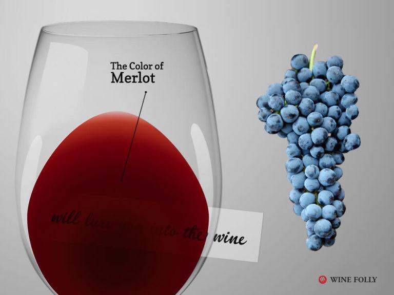merlot-wine-glass-grapes-winefolly