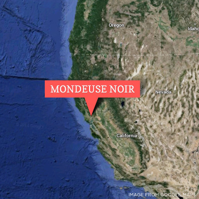Mondeuse Noir in Napa California