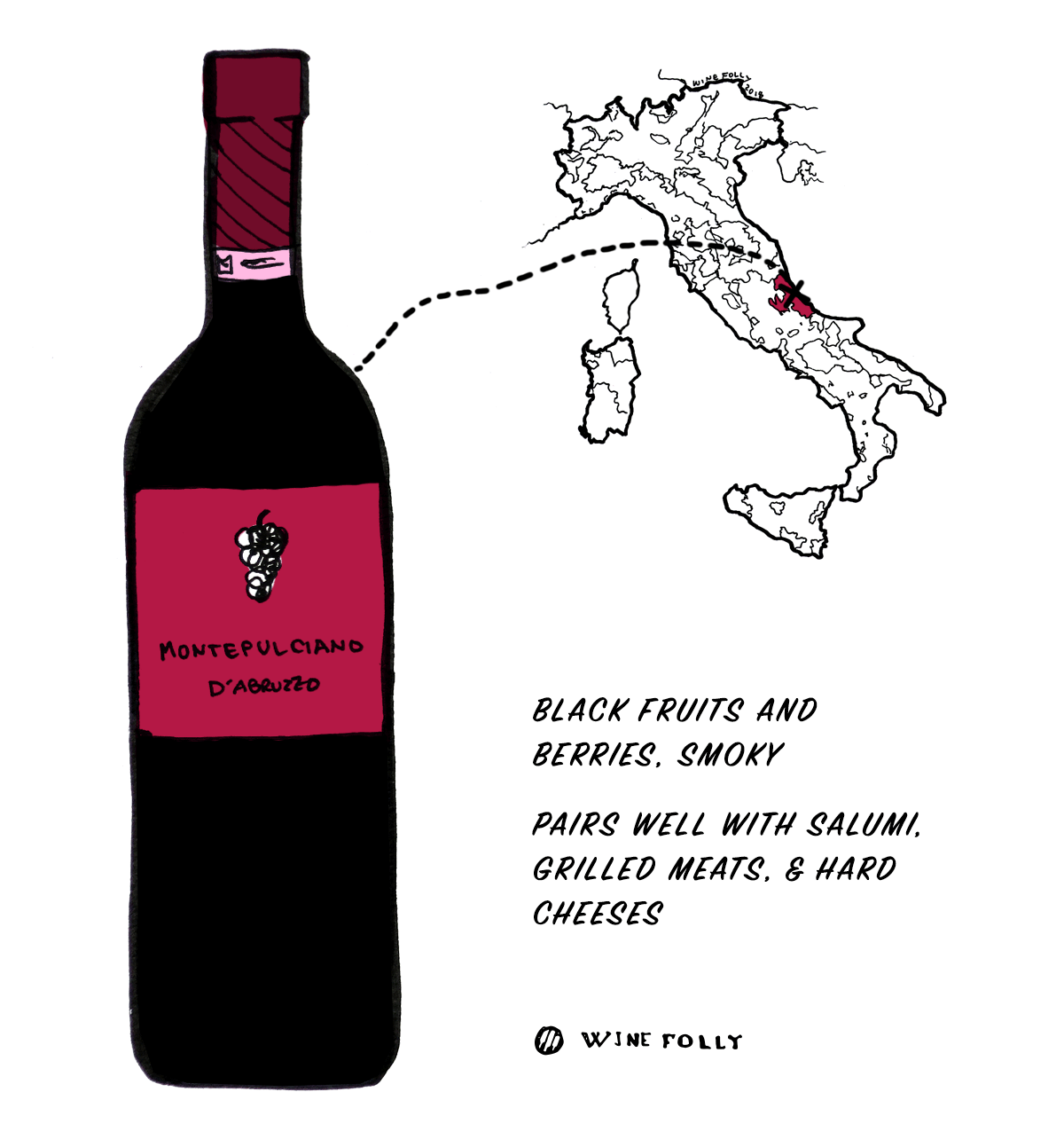 montepulciano-grape-wine-illustration-winefolly