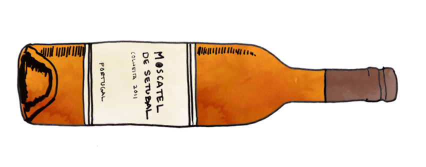 moscatel-de-setubal-illustration