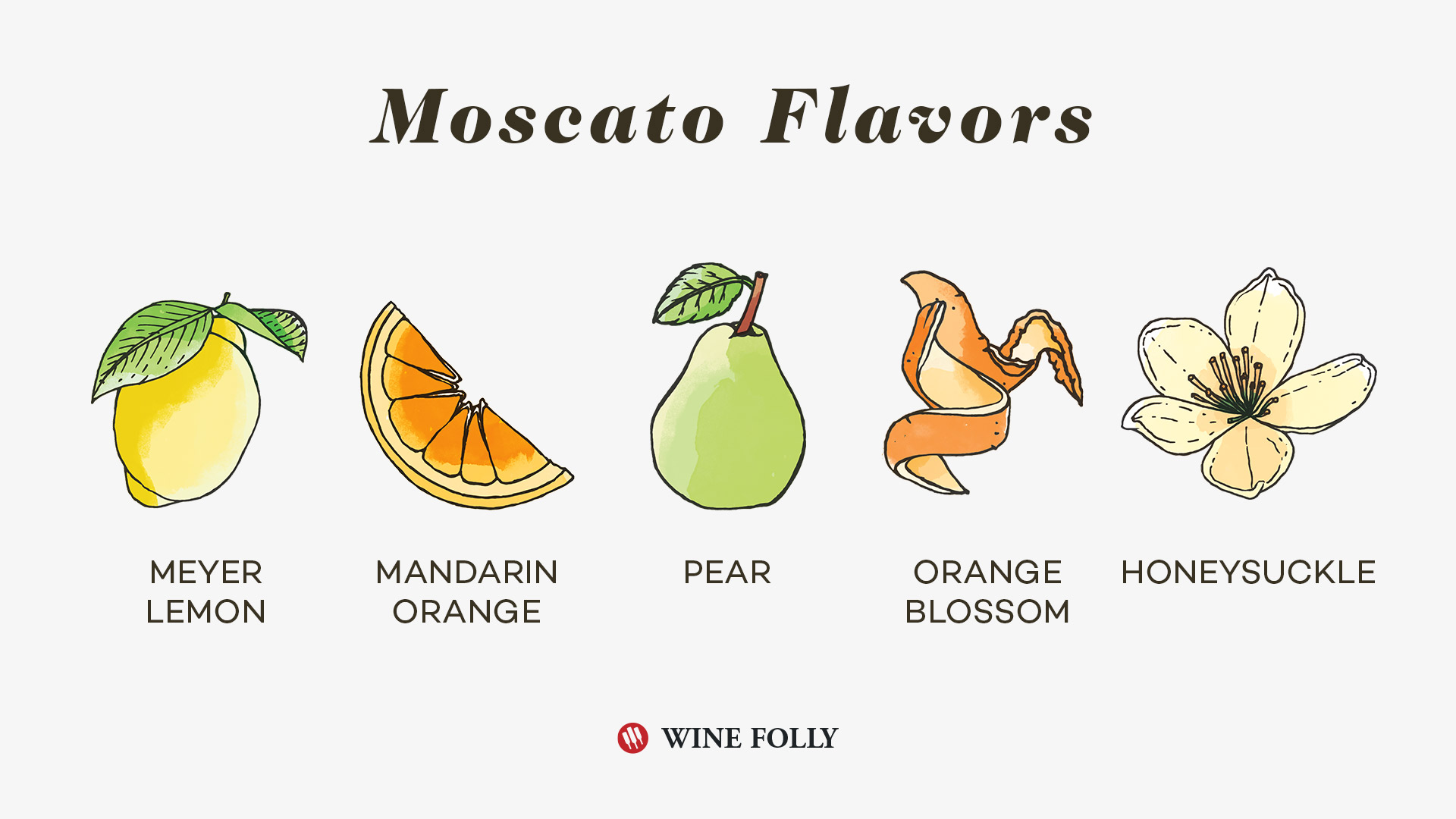 Moscato Wine Flavors by Wine Folly