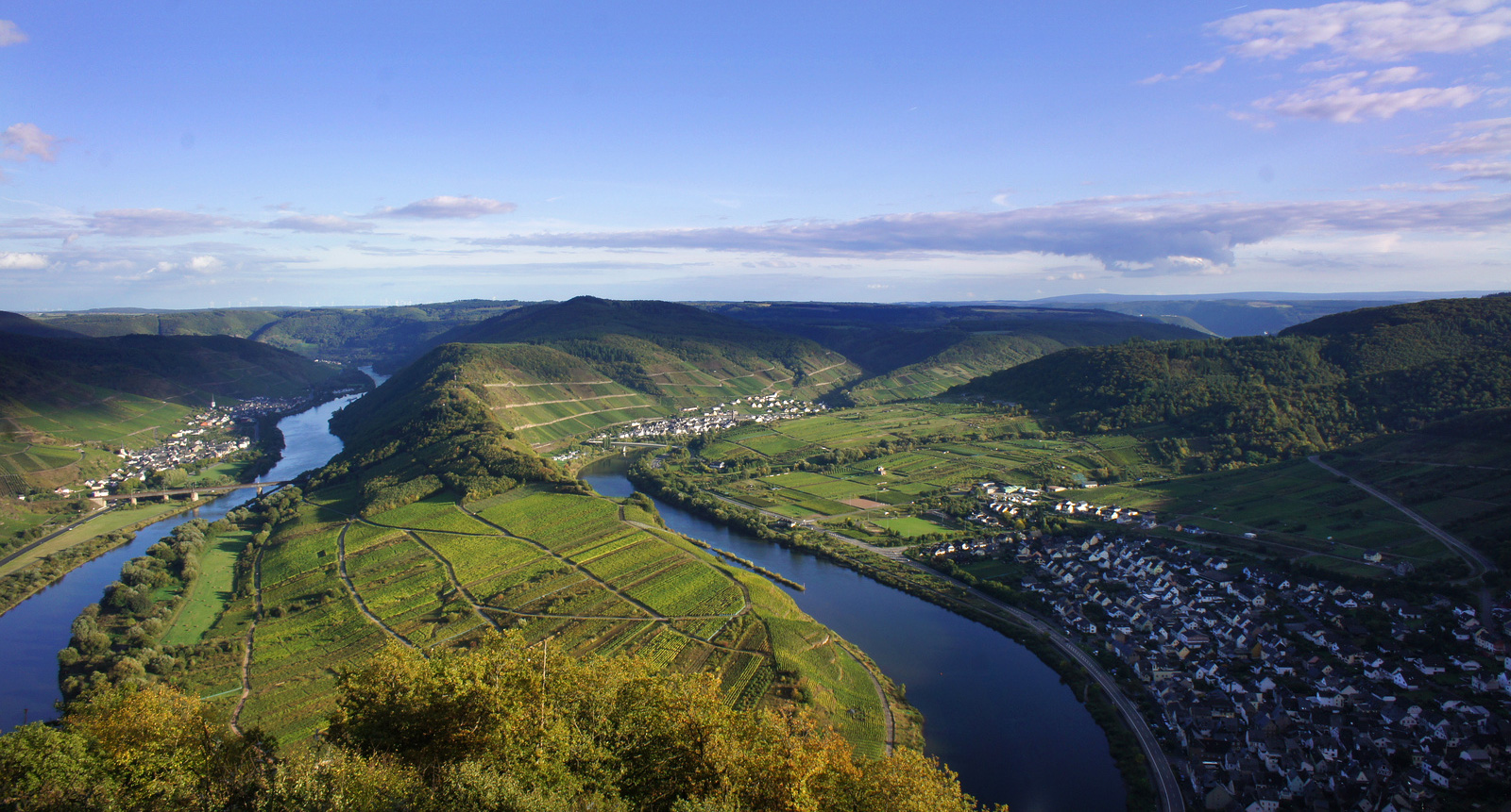 Mosel Riesling Vineyards in Germany