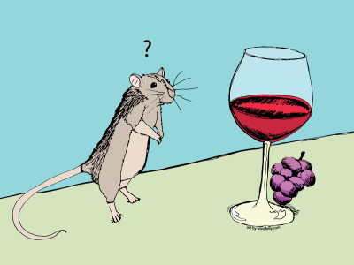 One red wine is linked to weight loss and good health