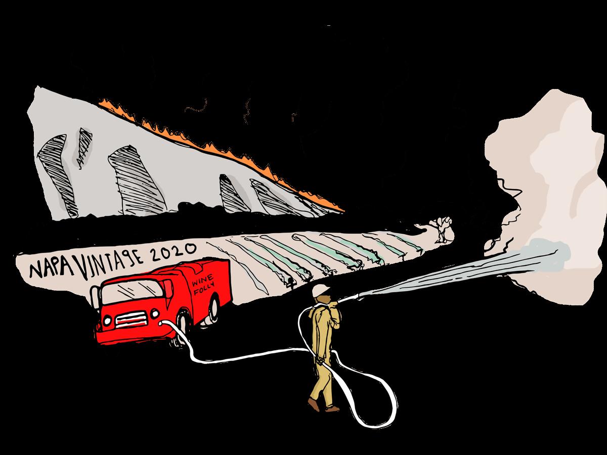 napa-valley-winery-fires-illustration-winefolly