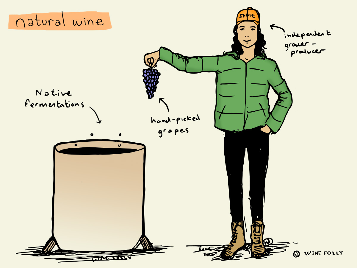 What is Natural Wine? A definition