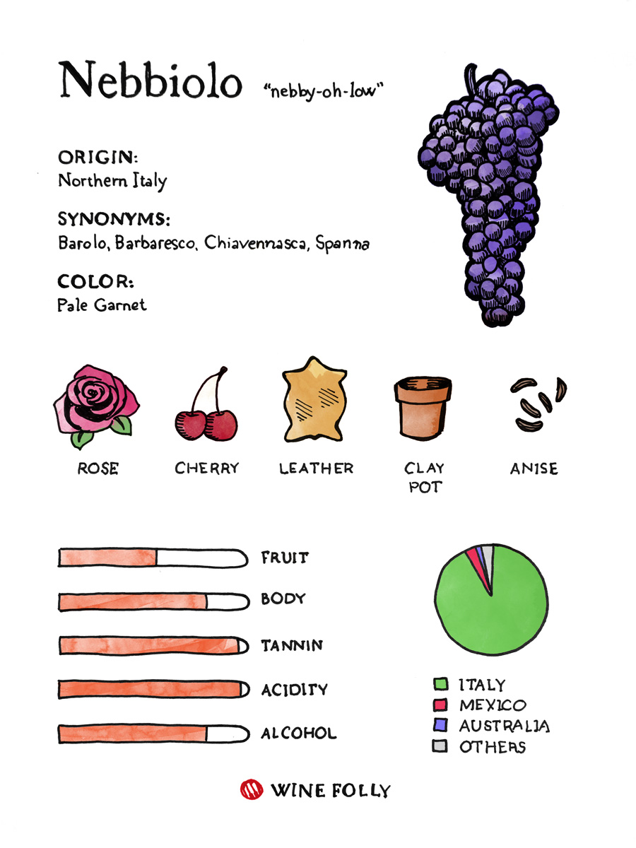 nebbiolo-tasting-profile-wine-folly