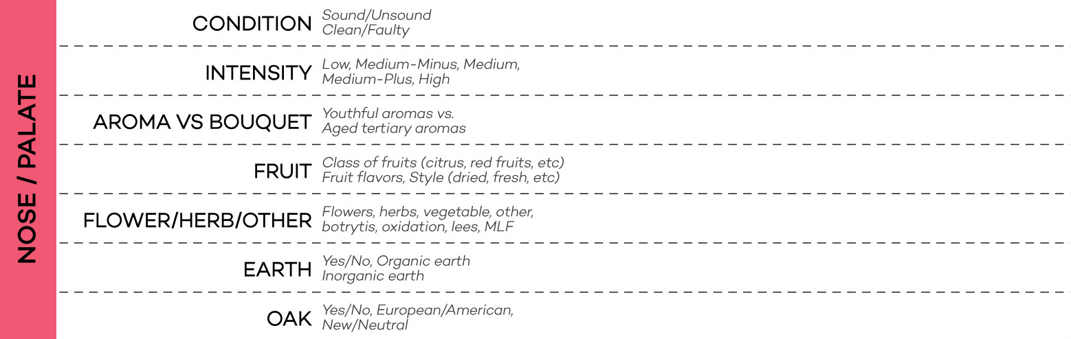 nose-palate-wine-tasting-grid-wine-folly