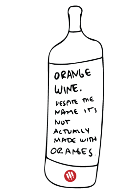 orange-wine-illustration