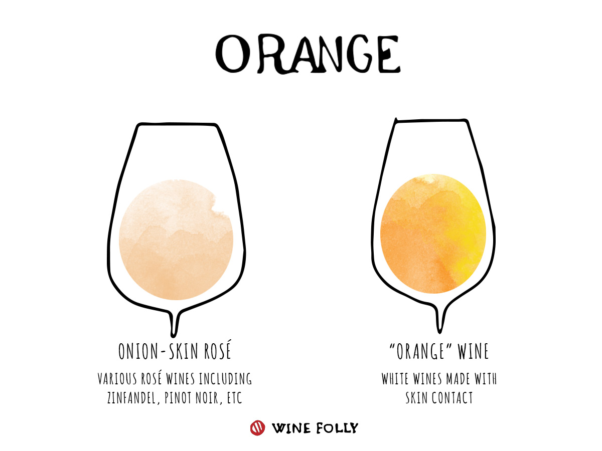 Orange Wine Information in glasses illustration by WIne Folly