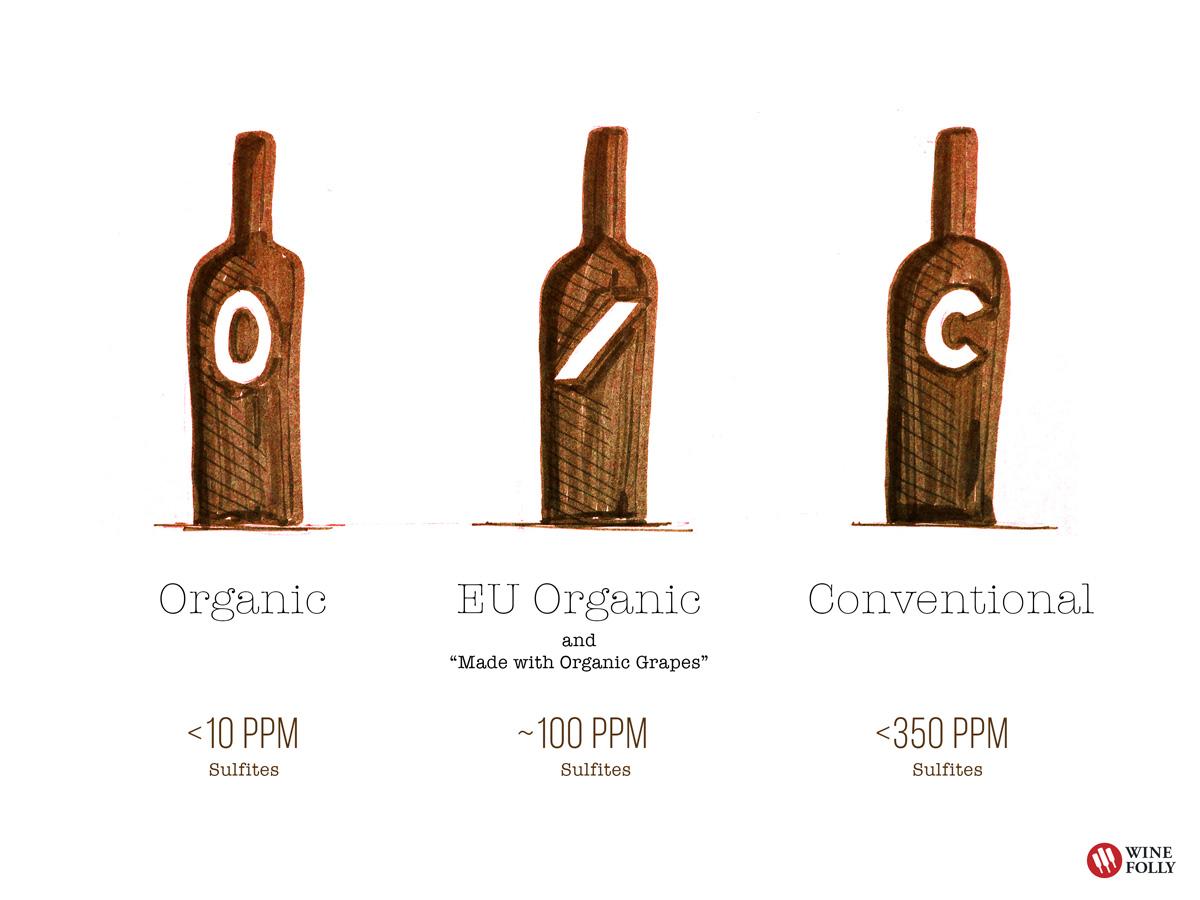 Organic wine vs Conventional Wine Sulfites in wine