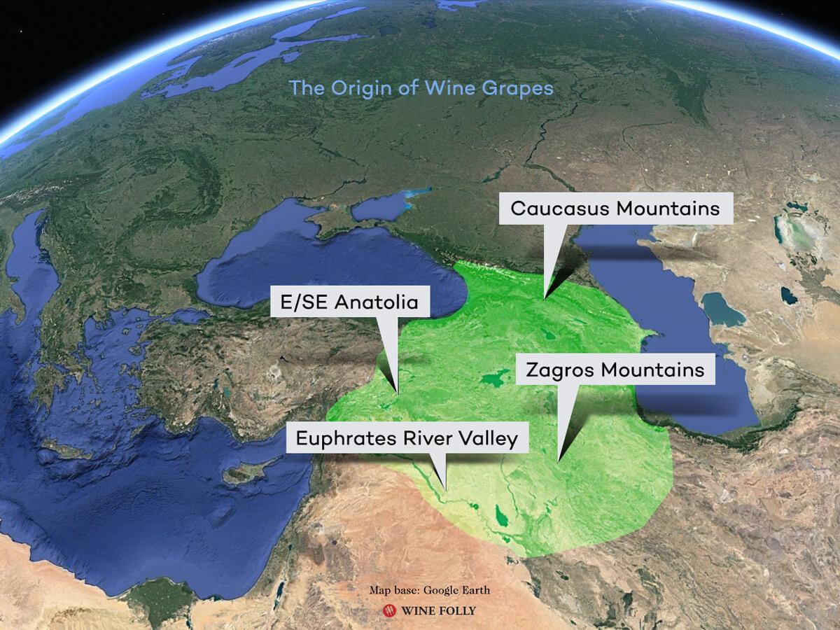 origin-of-wine-grapes-2020-map