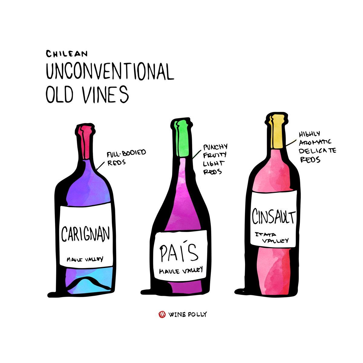 pais-carginan-cinsault-chile-wine-folly