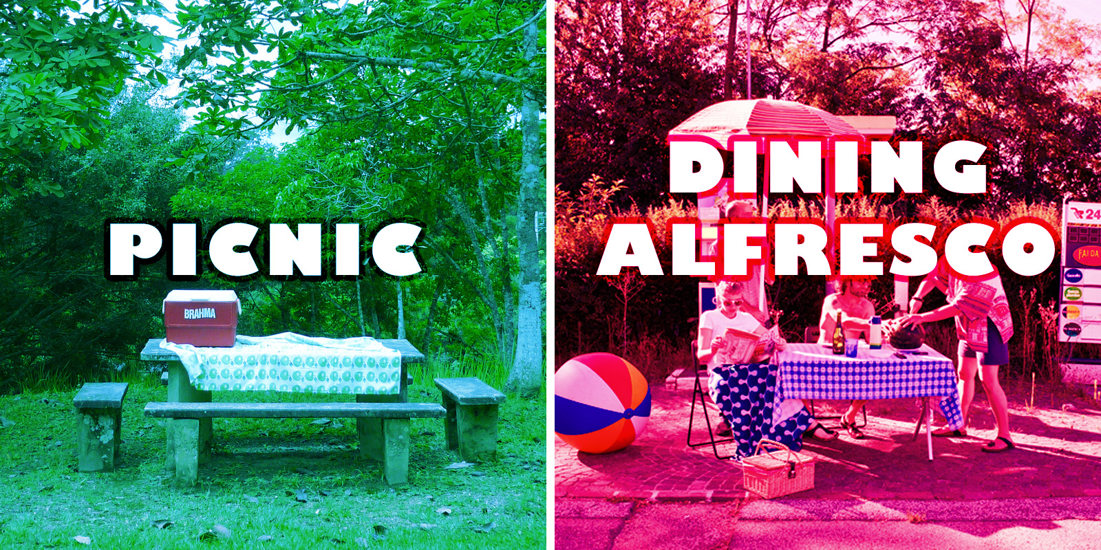 picnic-vs-dining-alfresco