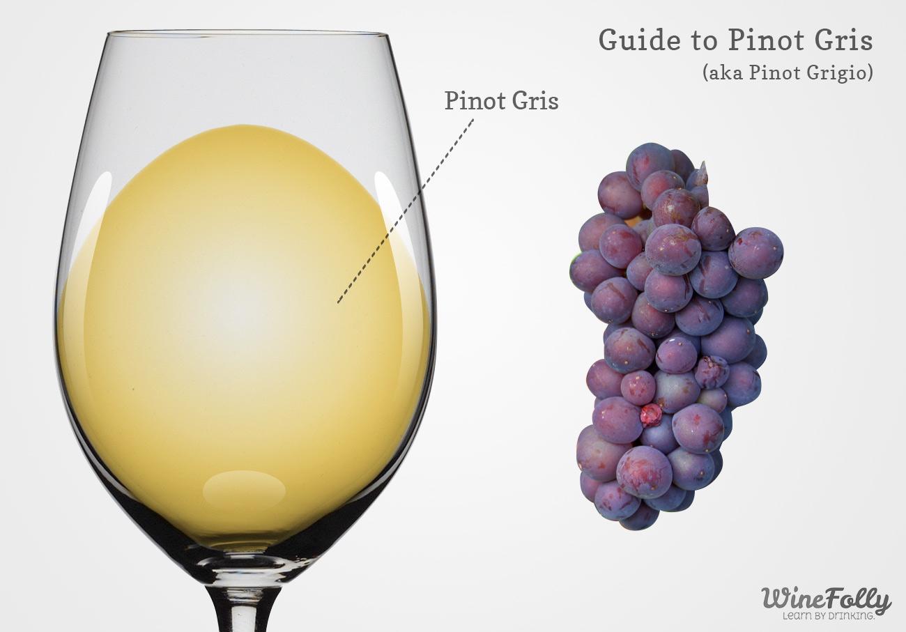 Pinot Grigio Wine Guide (aka pinot gris)