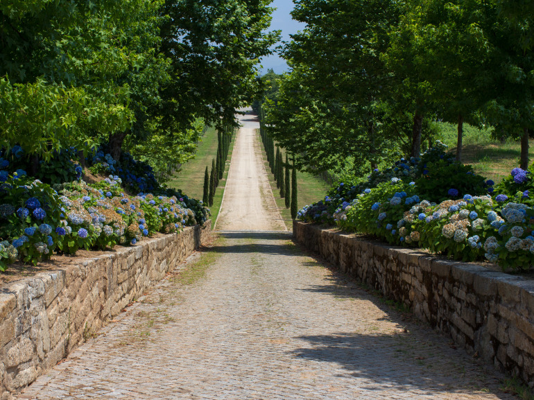 The cobblestone road to Quinta de Azevedo in Barcelos, Portugal makes Vinho Verde Wines in Minho