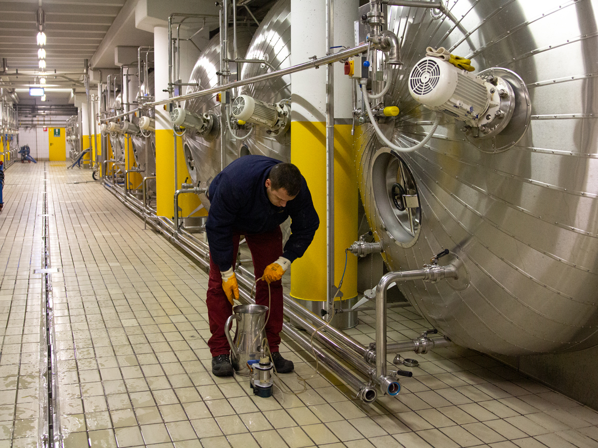 A photo of a man working in a cellar surrounded by large charmat-style prosecco fermentation tanks in Northeastern Italy
