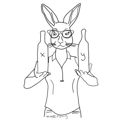 rabbit-in-clothes-wine-hipster-illustration