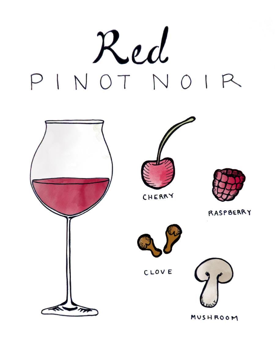 red-pinot-illustration