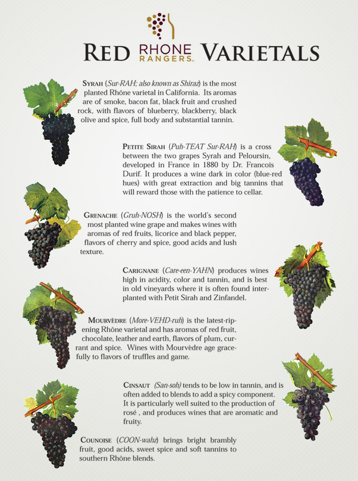 Image result for rhone valley wine grapes