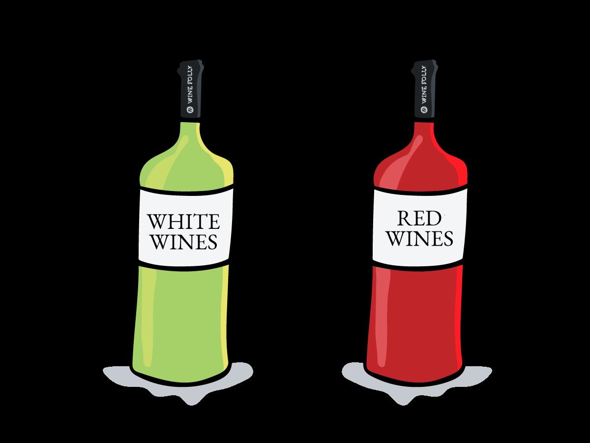 red-vs-white-wines-illustrations