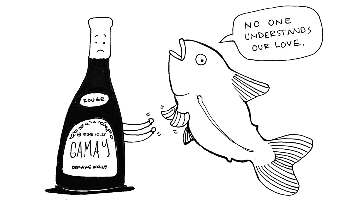 red-wine-and-fish-illustration-comic-winefolly