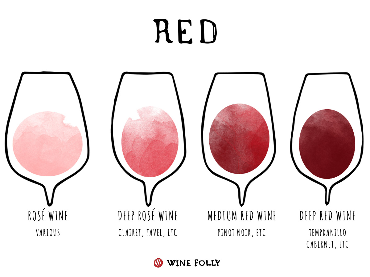 Red wine color information wine in glasses illustration by Wine Folly