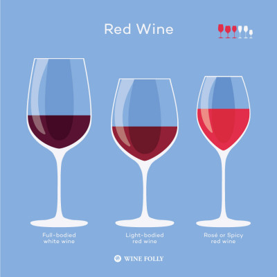 Types of red wine glasses and why to choose them by Wine Folly