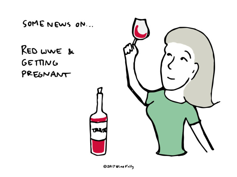 Red Wine and Pregnancy Health Illustration by Wine Folly
