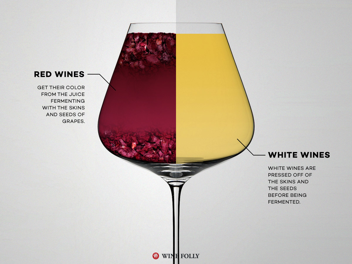 red wine vs white wine: the real differences | wine folly