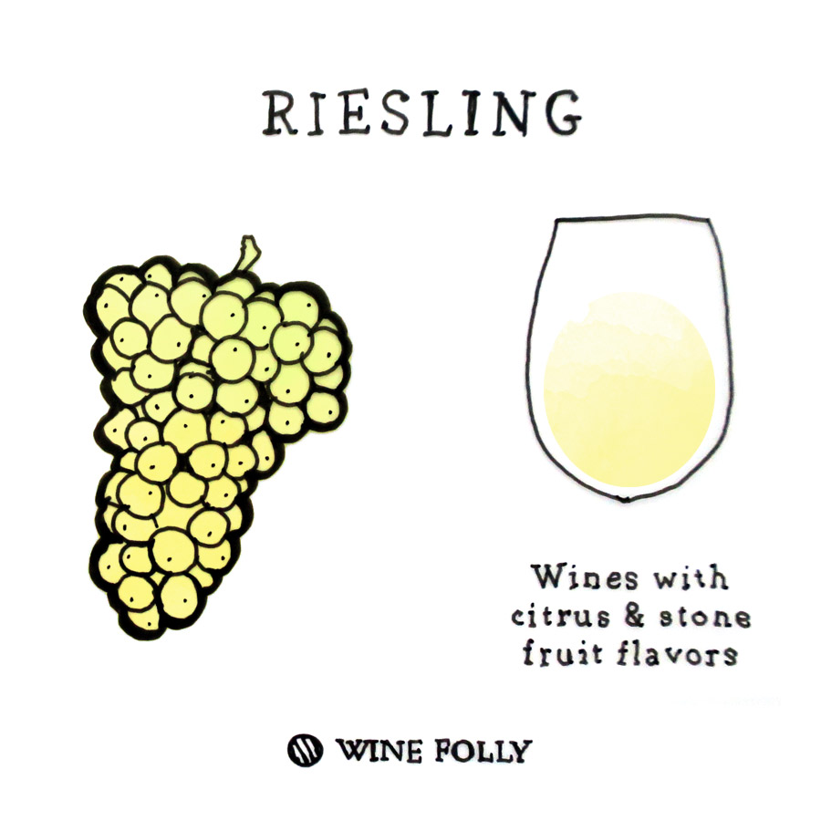 Riesling Wine Grape Illustration by Wine Folly