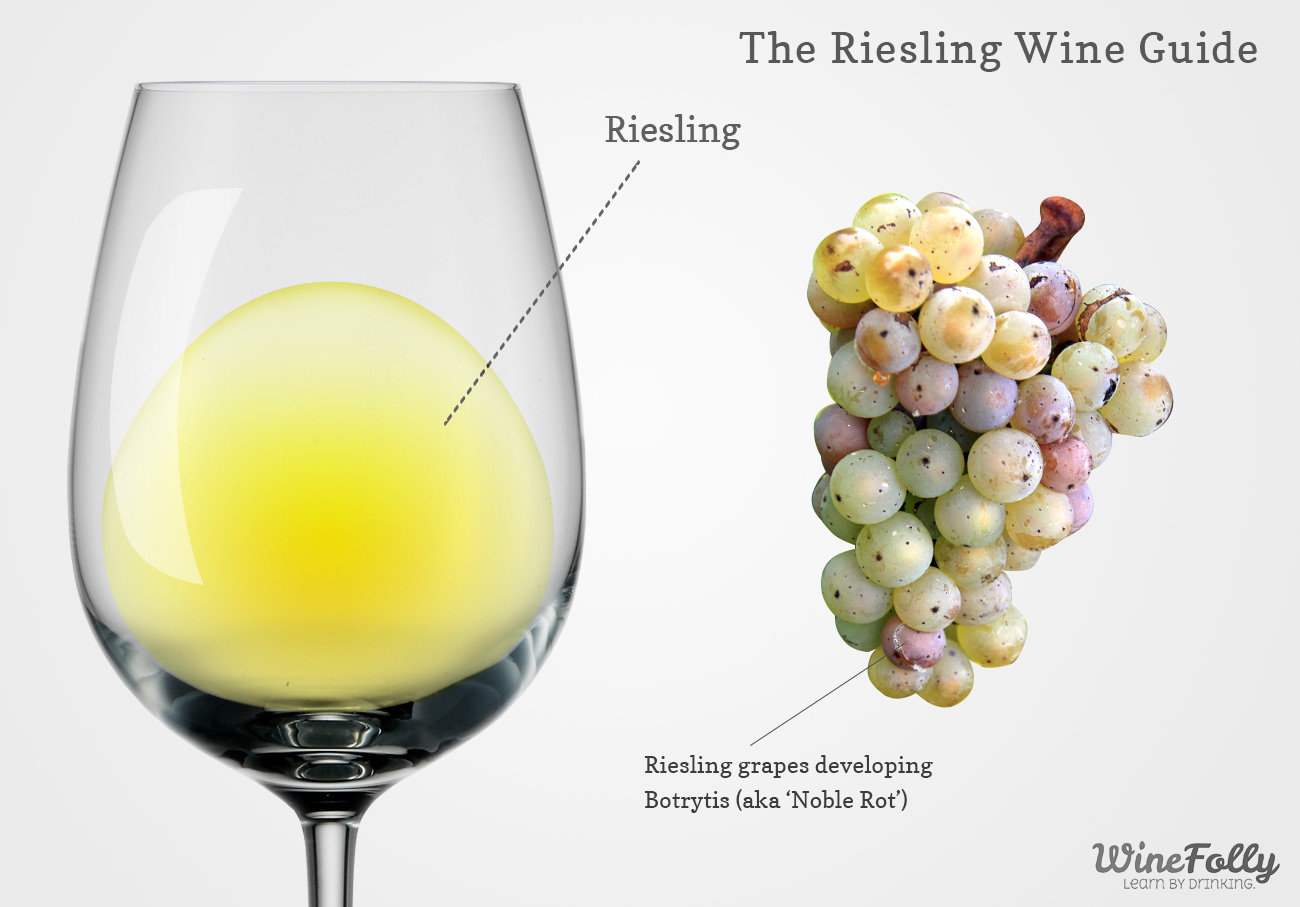 Riesling wine and grapes