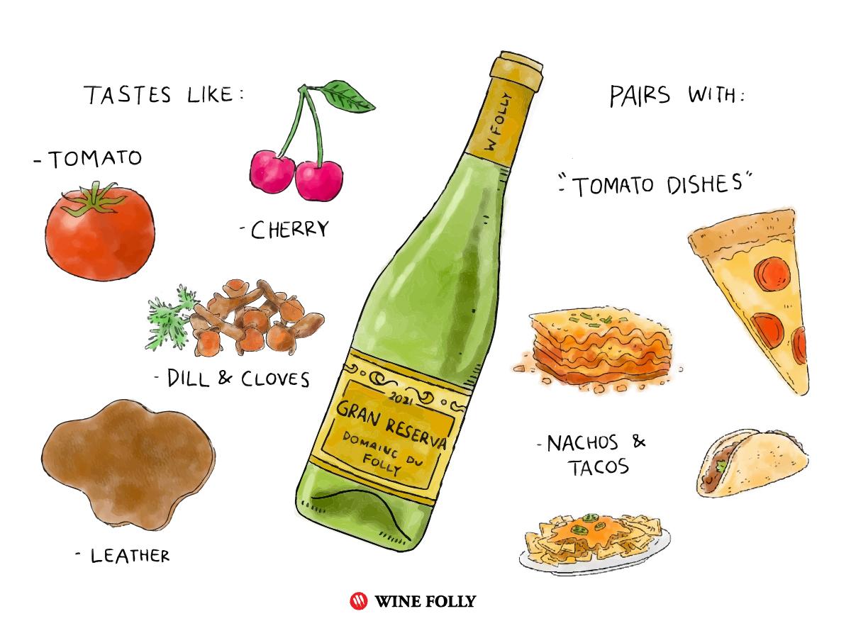rioja-wine-taste-like-pairs