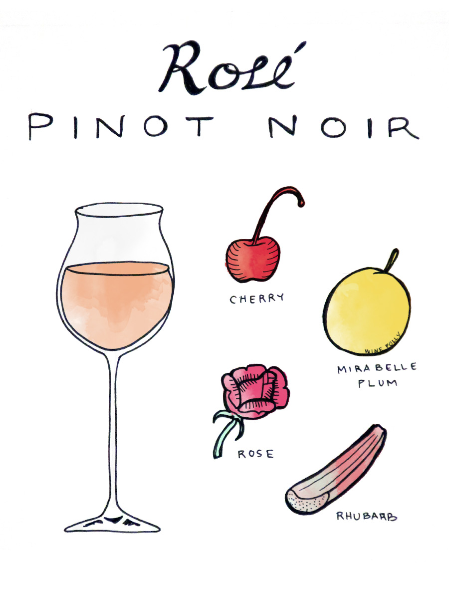 rose-pinot-noir-illustration
