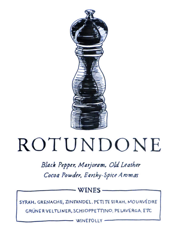 rotundone-illustration
