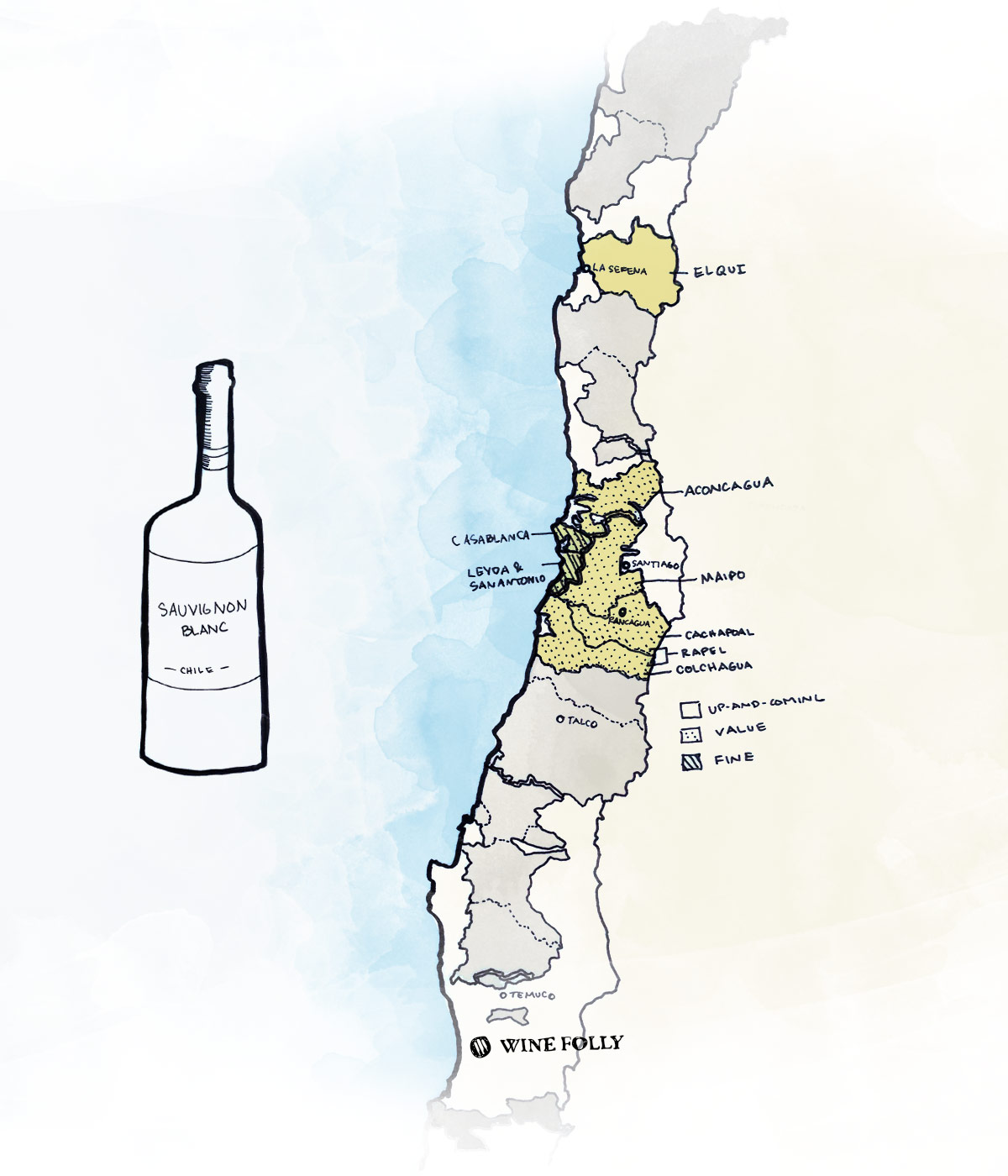 Best wine regions to look for Sauvignon Blanc in Chile