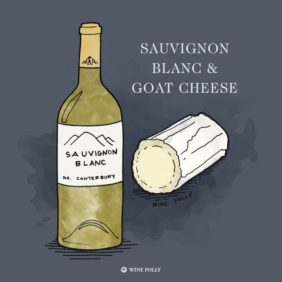 sauvignon-blanc-goat-cheese-pairing-illustration