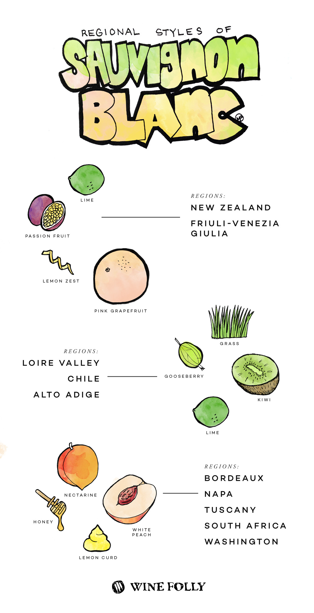 Regional Styles of Sauvignon Blanc by Wine Folly