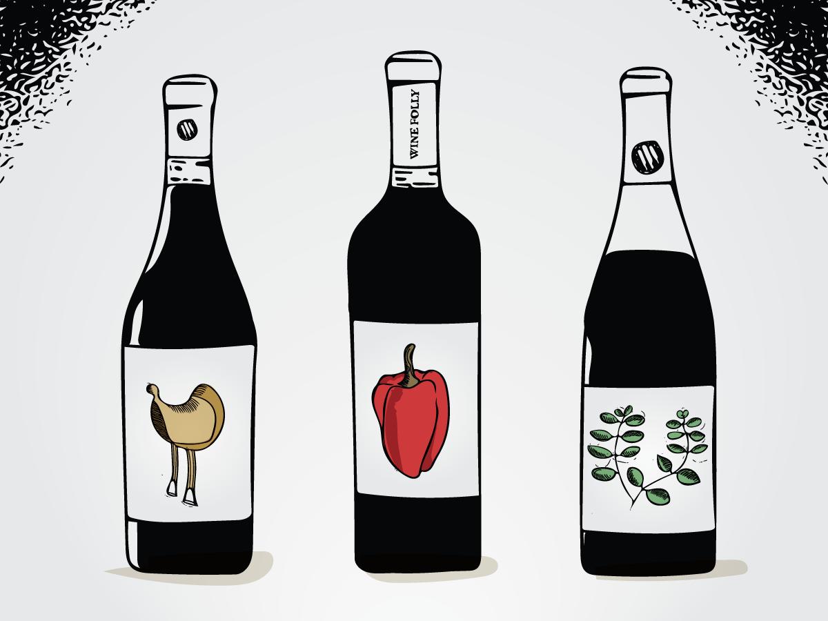 Savory Dry Red Wines