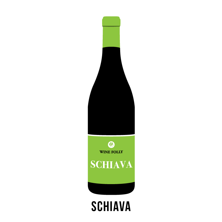 schiava-bottle-wine-folly