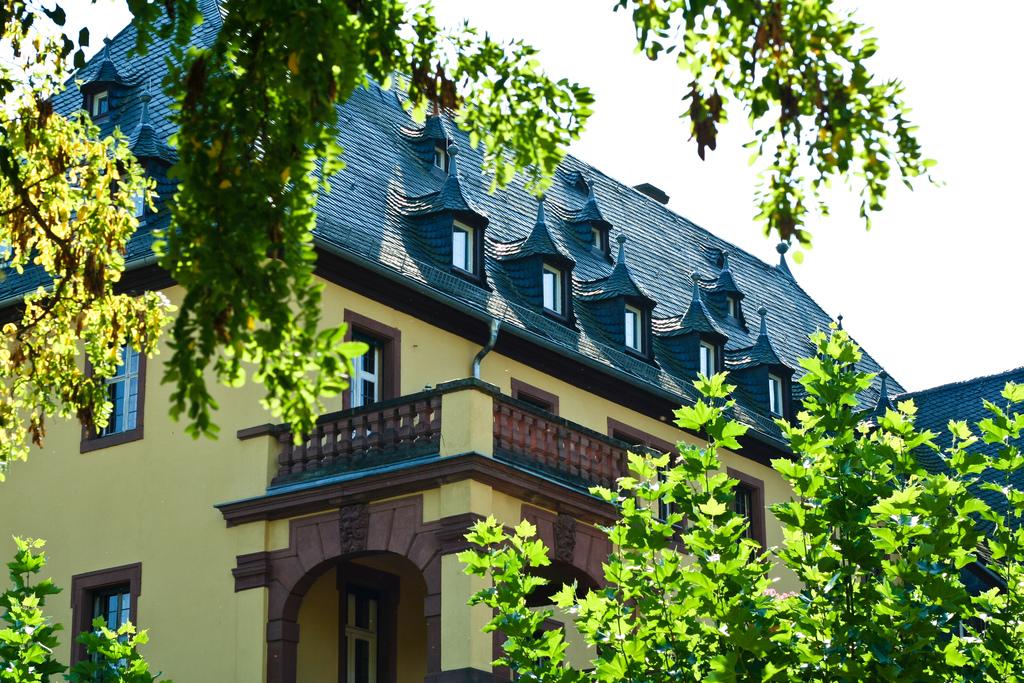 Schloss Vollrads Oldest Wineries